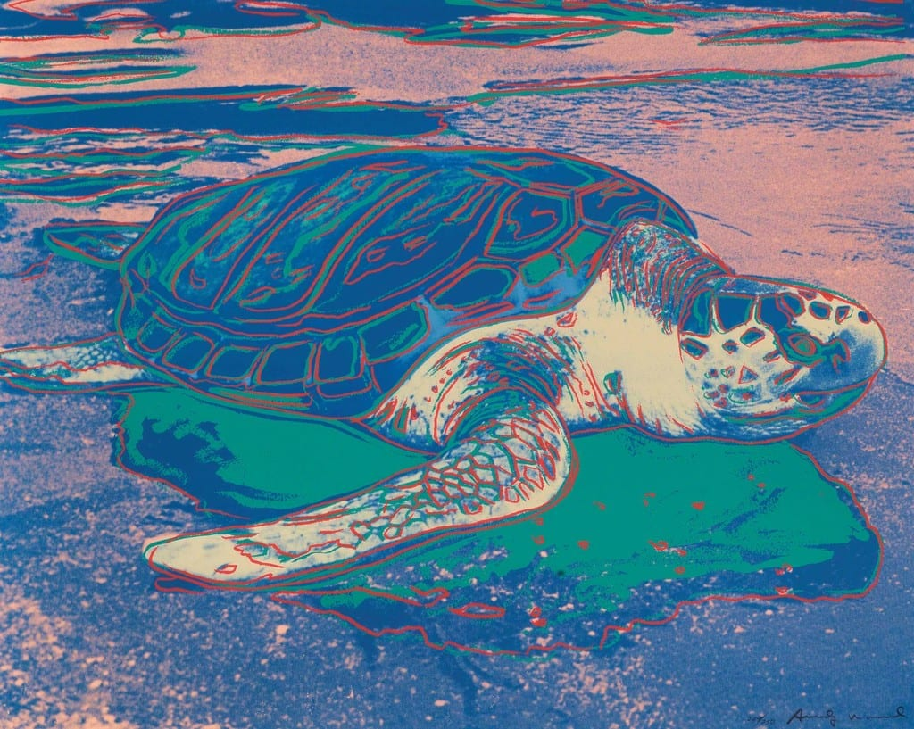 Andy-Warhol-Sea-Turtle